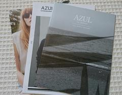 ☆AZUL by moussy2016カタログ☆