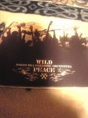 DVD付CD,東京スカパラダイスオーケストラ WILD PEACE