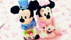 ウエディング人形♪ミッキー&ミニーちゃん