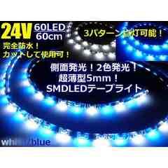 送料無料!24V 極薄SMDLEDテープライト60cm/60LED防水■白⇔青