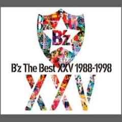 The Best XXV 1988-1998(初回限定盤/2CD+DVD)