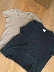無地Tシャツ 二枚セット