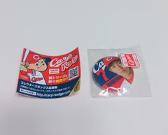 カープ★バッジ【堂林翔太】