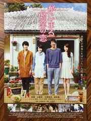 映画「がじまる食堂の恋」チラシ10枚 波瑠 小柳友 竹富聖花