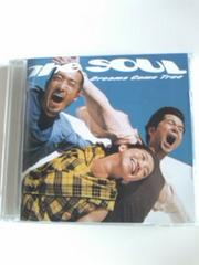 (2CD)ドリームズカムトゥルー☆The SOUL2枚組ベスト即決アリ
