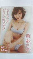 DVD/湊あさか/ペットマニア ピンクのリップ/国内正規品