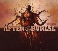 AFTER THE BURIAL/RAREFORM/�޽��/Djent/PERIPHERY/VEIL OF MAYA