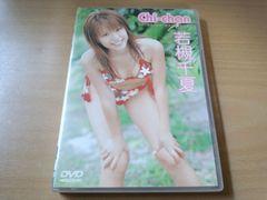若槻千夏DVD「Chi-chan」●