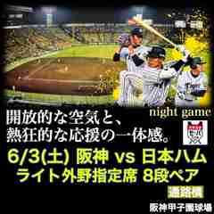 ☆交流戦☆6/3(土)阪神vs日本ハム ライト外野指定 8段2連番ペア/通路横