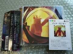 いきものがかり『プラネタリウム』【初回盤】カード(008)他出品
