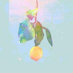 即決 シリアル封入 米津玄師 Lemon 映像盤 初回盤 (CD+DVD) 新品