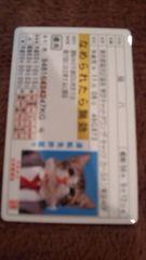 なめ猫免許証猫八ver