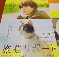 映画『旅猫リポート』フライヤー5枚,福士蒼汰,高畑充希,ナナ
