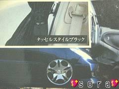 【VISTOSO】ドレスUP車に♪カーテンベルト タッセルスタイル