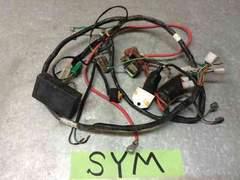 ☆ SYM symply50 シンプリー 実働 メインハーネス cdi