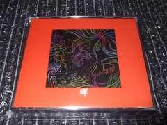 蝉『蝉』廃盤4枚組アルバム良好 (博多のラリーズ,OZ DISC)