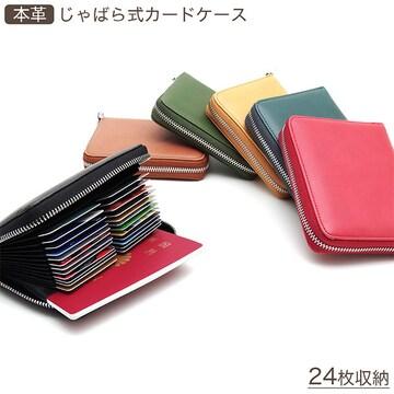 ¢M 大容量 計24枚のカードが収納 じゃばら式カードケース/RD