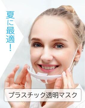 プラスチック 透明マスク10枚