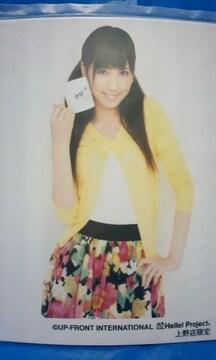 劇団ゲキハロ6 あたるも八卦 上野・L判1枚 2009.7.11/梅田えりか