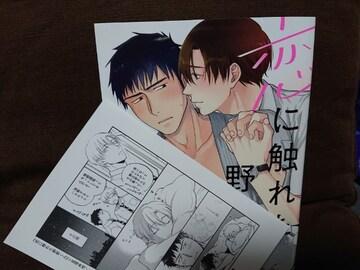 BL*10月刊 アニメイトP付【恋に触れた野獣くん】亘理肖悟