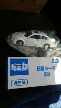 トミカ 非売品 日産シーマ 限定カラー白 未使用 新品