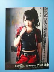即決NMB48 小笠原茉由 ギンガムチェック 劇場盤限定公式生写真 AKB