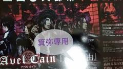AvelCainフライヤー&冊子◆2013〜15年即決