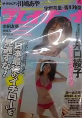 即決井口綾子 生写真付き 週刊プレイボーイ ブロマイド L判 特典