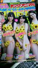 ヤングアニマル◆13/7/26★SKE48/3月のライオン/ナナとカオル/のら女子高生