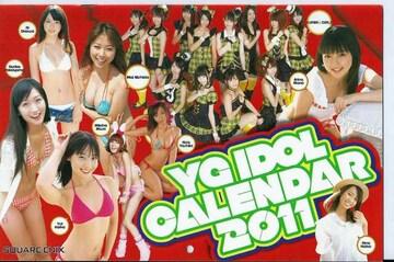 ZS ヤングガンガン No.12『YGアイドルカレンダー2011』
