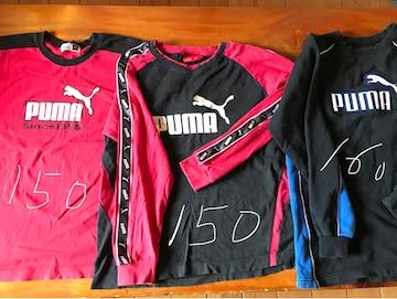 Puma プーマ Tシャツ サイズ150-160トレーナー 3枚