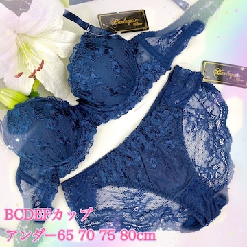 5点以上送料無料☆F80L 花刺繍レースネイビー ブラ&ショーツ