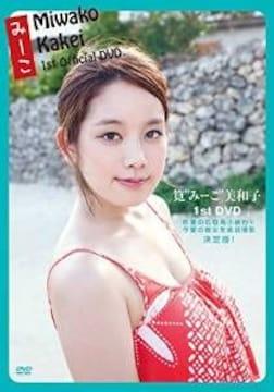 ■DVD『筧美和子 みーこ 1st』巨乳グラビアアイドル