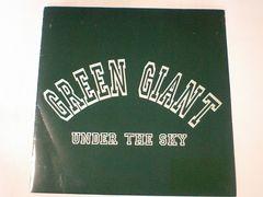 グリーンジャイアント「UNDER THE SKY」貴重音源満載廃盤アナログ ハイスタSHERBET