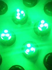 Y50フーガY33シーマY33グロリY33セドリック適合保証@LED@ドアランプ6連SMD緑4個