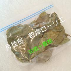 月桂樹 乾燥ローリエ 30枚+おまけ カレー 香辛料