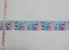 【グラデ:パレード】25mm巾 ダッフィー系リボン1M