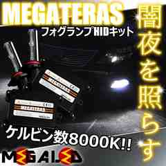 mLED】レクサスLS600hl前期中期/フォグランプHIDキット/HB4/8000K