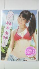 AKB48 柏木由紀 DVD 以上、グアムから 新品未開封 即決