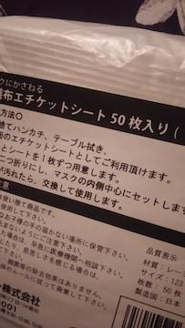 不織布エチケットシート*個包装*日本製