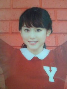 桐谷美玲 Y!mobile ワイモバイル 猫 ネコ ねこ クリアファイル 携帯 スマホ CM
