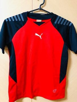 プーマ/PUMA/スポーツ/Tシャツ/130