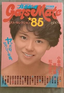 週刊 プレイボーイ 特別編集 ギャルズメイト☆  昭和 80年代