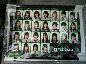欅坂46「A3版タペストリー(アップver.)」