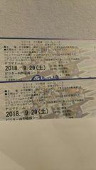 通路側!9/29(土)中日VS阪神ビジター内野応援シートペア