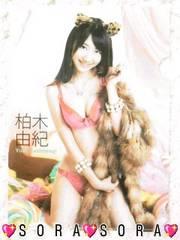 【AKB48・柏木由紀】2012年カレンダー封入特典♪上質クリアファイル