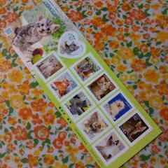 【未使用】切手シート☆身近な動物シリーズ☆820☆猫