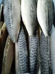 ☆大人気  骨なし 塩サバフィーレ 35枚  5キロ  冷凍